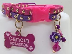 Collars Dog , necklace for Pets for Sale in Davenport, FL