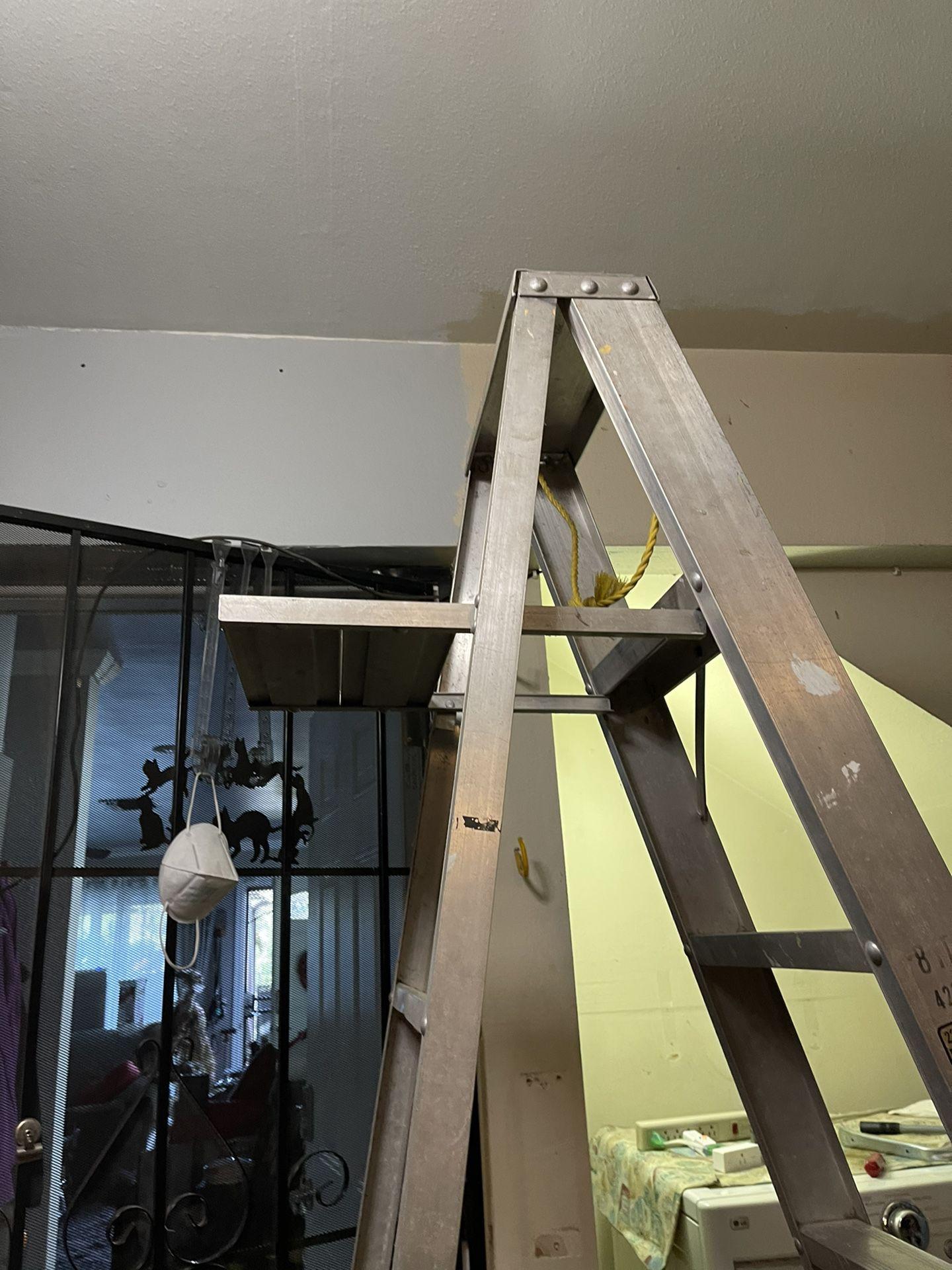 Aluminion Ladder