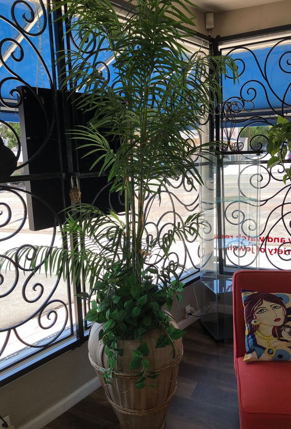 Artificial Plants For Sale In La Mesa Ca Offerup