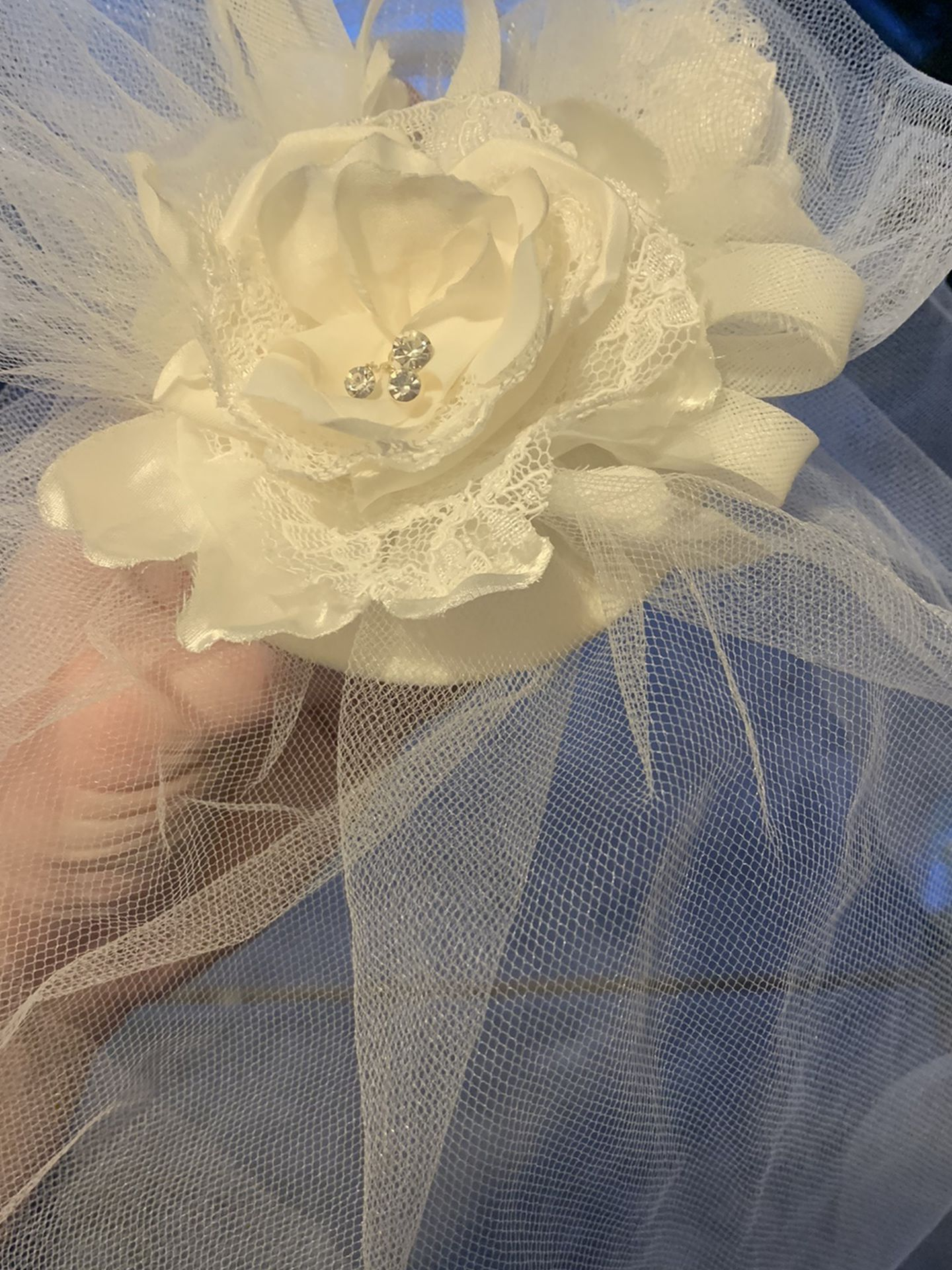 Birdcage Veil From David's Bridal