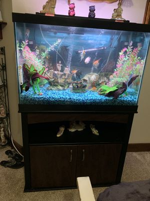 New and Used Fish tanks for Sale in Boise, ID - OfferUp