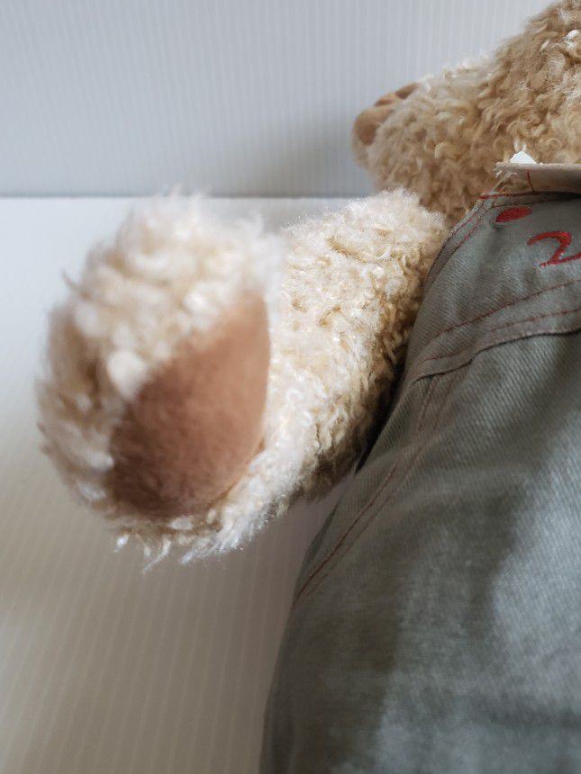 """Teddy Bear Plush Charter Club Federated Department Stores Macy's 16"""" 2000. Condition is Used  With Tags"""