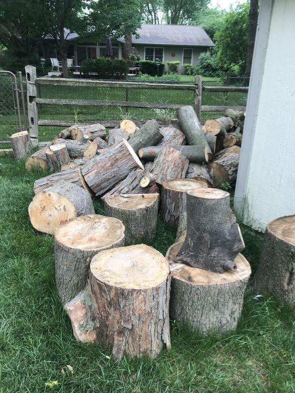 Free Fresh Tree Stumps For Sale In Indianapolis In Offerup