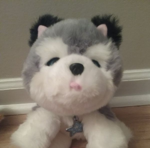 Little Live Pet My Dream Puppy Husky Interactive Toy For Sale In Newport News Va Offerup