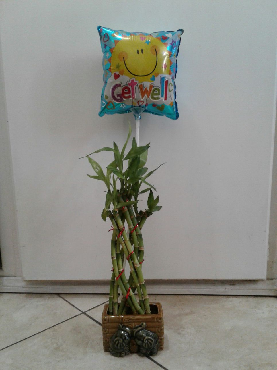 Bamboo plant with get well balloon