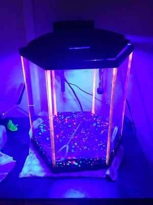 Glow in the dark Pentagon aquarium (8gallon) for Sale in Washington, DC