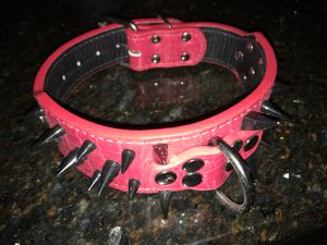 New Leather Dog Collar for Sale in Orlando, FL