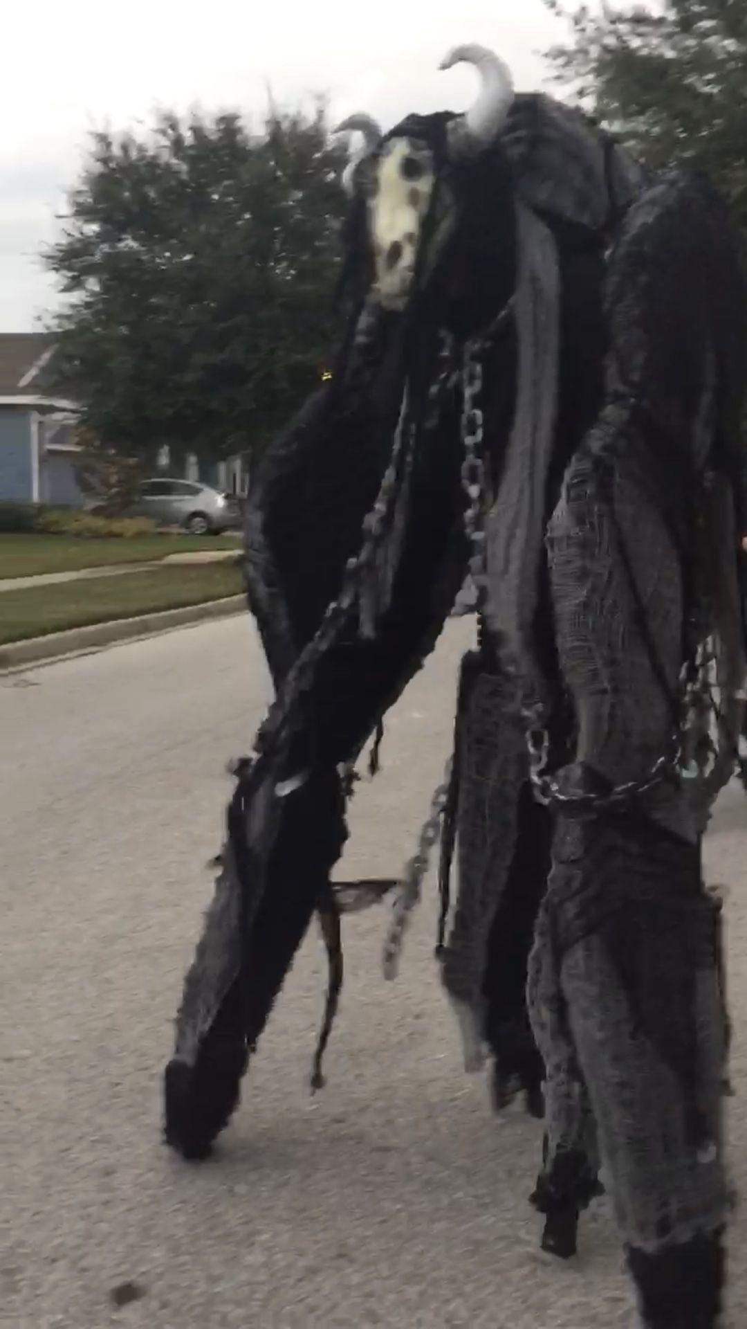 Custom 4 Legged Stilt Costume