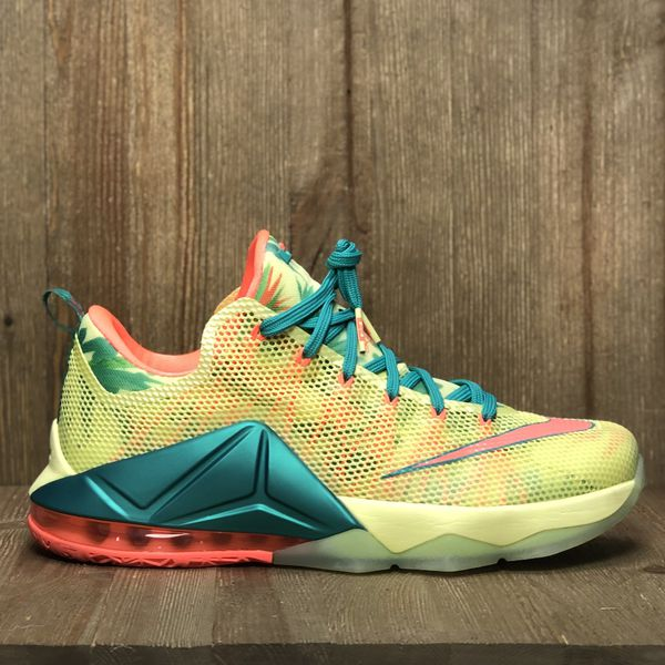 huge discount 42f2b 283f4 Nike Lebron XII Lebronold Palmer VNDS Size 12 for Sale in MAYFIELD VILLAGE,  OH - OfferUp