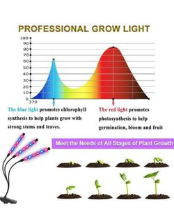 Grow Lights with Timer Thumbnail