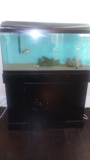 36 gallon fish tank with stand for Sale in Visalia, CA