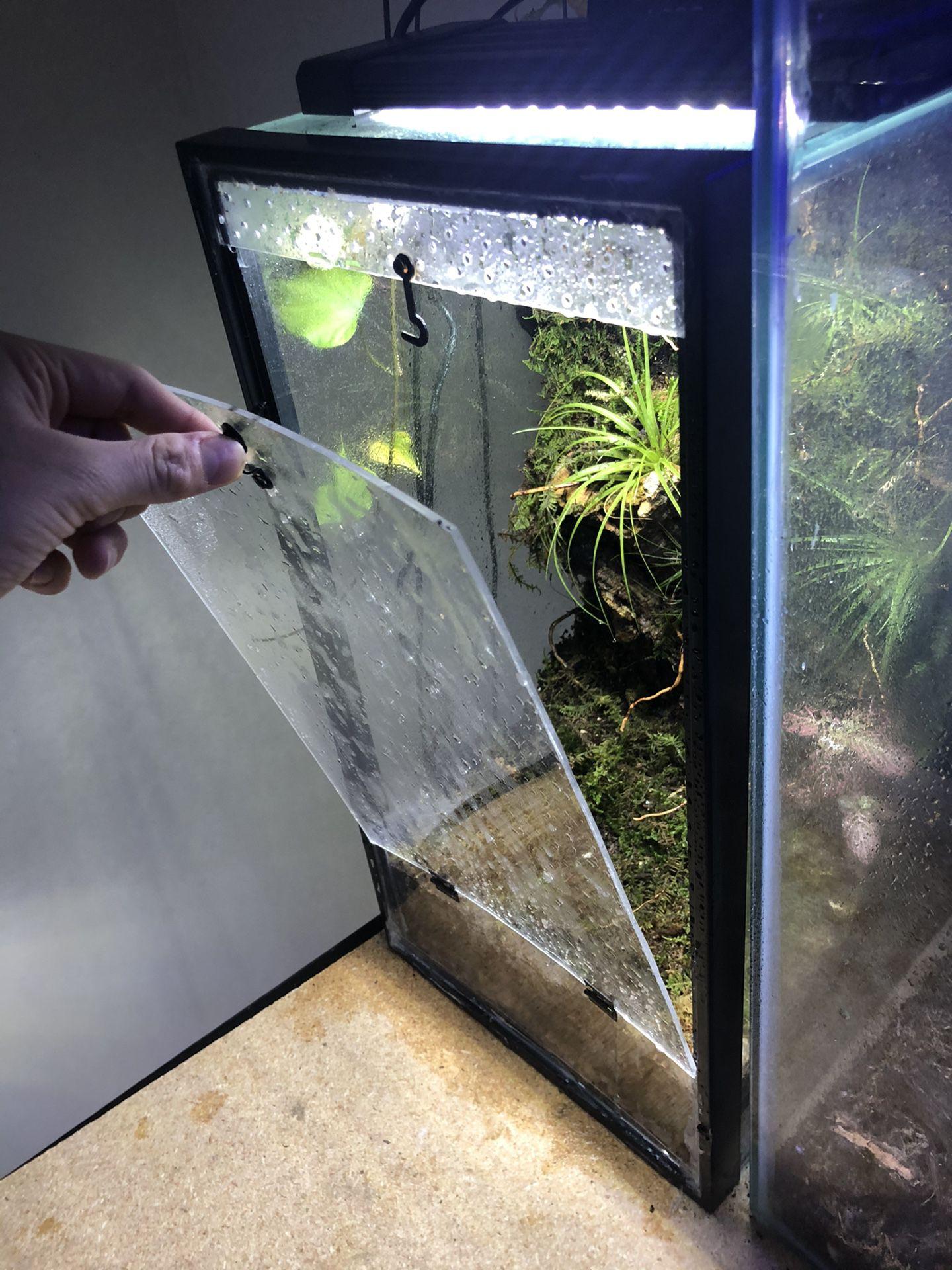 12x10x20 Custom Background Bioactice Terrarium Planted Airplant With Door