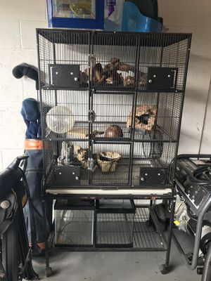 Rat cage for Sale in Sorrento, FL