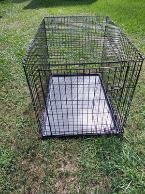 Large dog cage for Sale in Winter Springs, FL