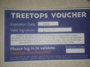 tree top resort for Sale in Detroit, MI