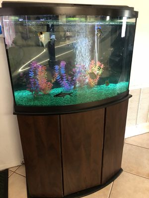36 gallon bow front aquarium for Sale in New Port Richey, FL