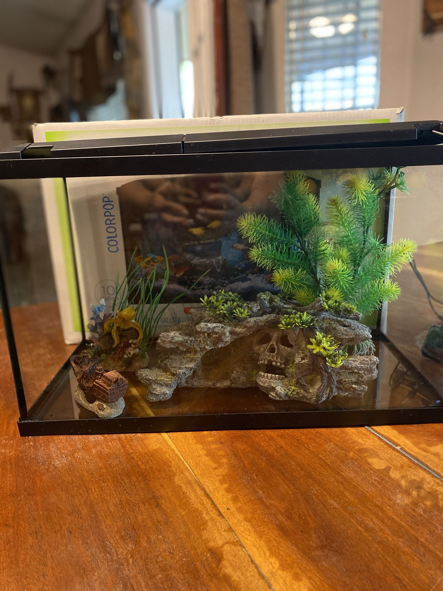 10 gal Fish Tank Kit And Decorations And Rock