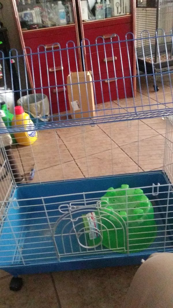 Cage for guinea pig hamster or chinchilla for Sale in West Covina, CA -  OfferUp