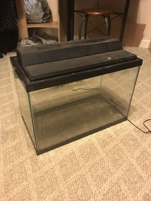 20gal tall fish tank for Sale in Huddleston, VA