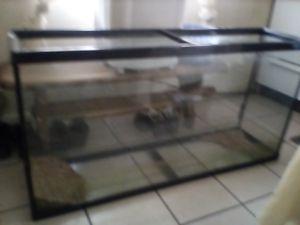 Photo 75 gallon reptile tank