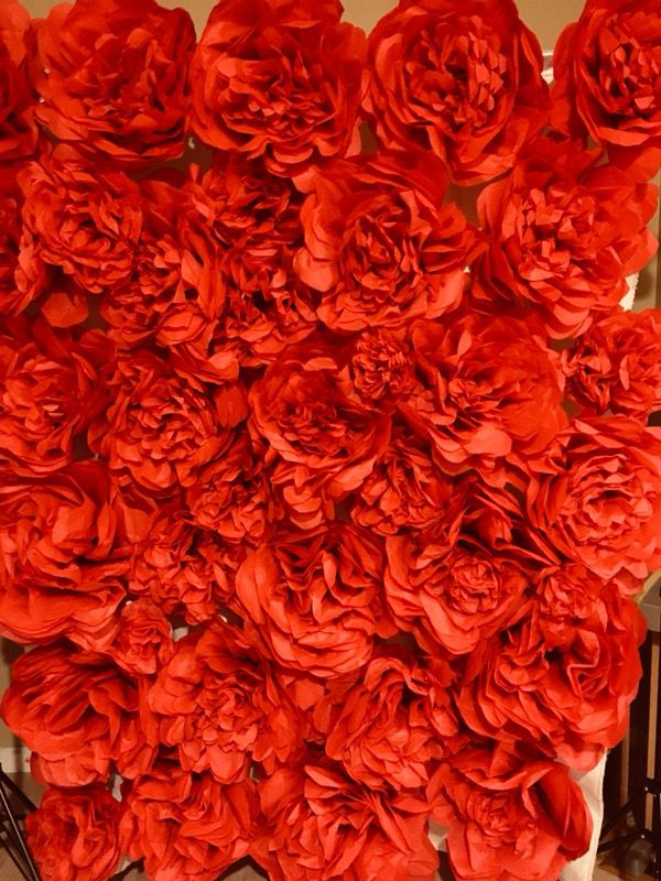 Elegant 6ftx7ft Tissue Paper Flower Backdrop For Sale In San Diego