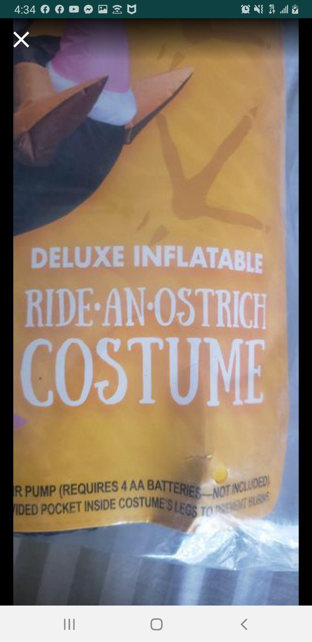 Halloween Inflatable costume