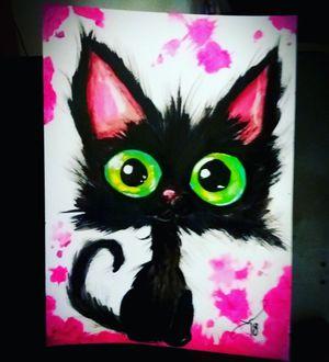 Black Cat for Sale in Orlando, FL