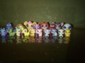 Small lps toys Thumbnail
