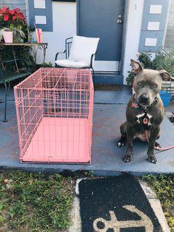 Dog crates Thumbnail