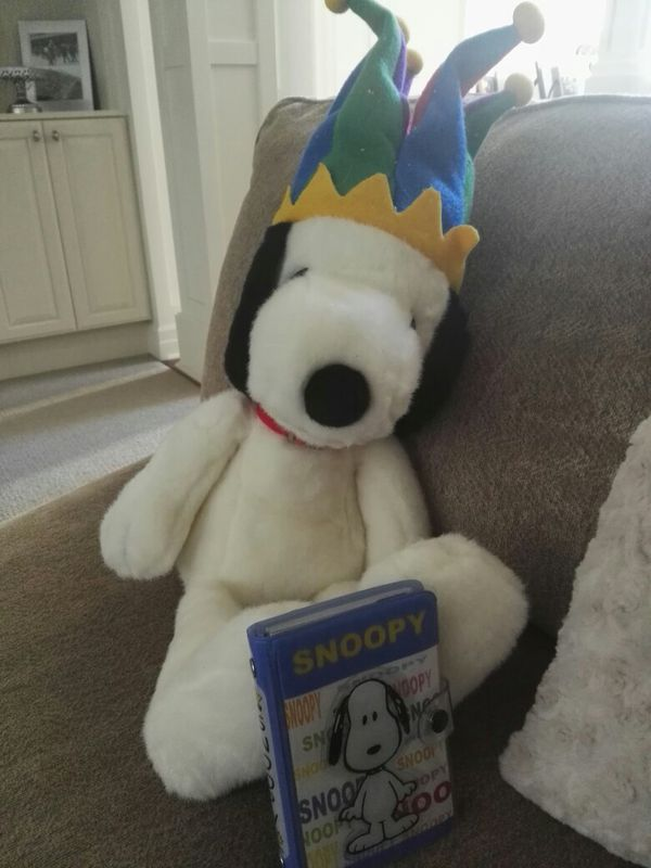 Peanuts Snoopy Plush And Planner Collectibles In Seattle Wa Offerup