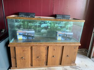 New and Used Aquarium filter for Sale in Denton, TX - OfferUp