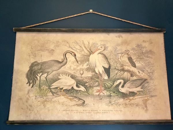 Rustic Canvas Heron Wall Hanging (Household) in New York, NY - OfferUp