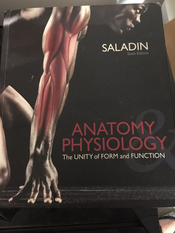 Saladin Anatomy Physiology Text Book For Sale In Tempe Az Offerup