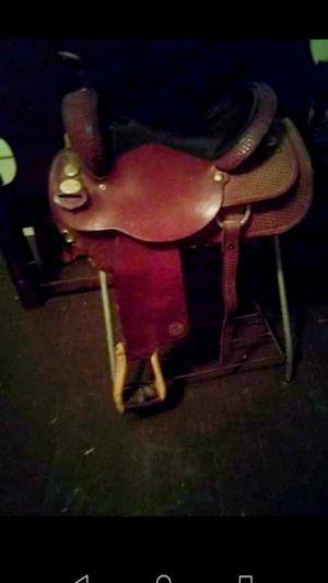 Photo Saddle Circle Y T Penner