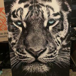 Tiger Canvas  Thumbnail