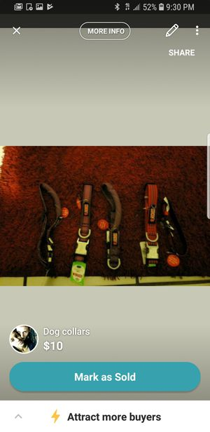 Dog collar for Sale in Orlando, FL